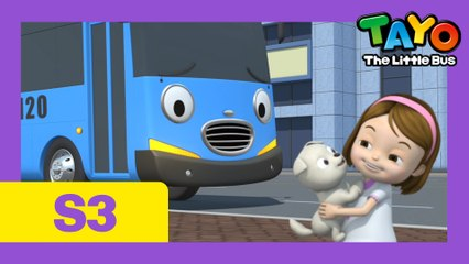 Ep.19  want a puppy l Tayo the Little Bus Season 3