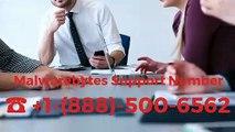 ☎ +1-(888)-500-6562 Malwarebytes Customer Support Phone Number