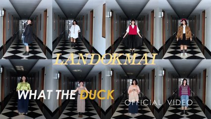 What The Duck - A DUCK FROM HOME - LANDOKMAI