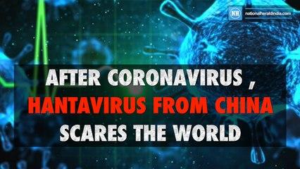 After coronavirus , hantavirus from China scares the world