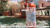 TERMURAH!!! +62 813-2666-1515 | Harga Souvenir Wisuda Untuk Laki Laki di Makassar