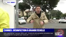 Coronavirus: à Cannes, désinfection à grande échelle