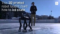 A 3D printed robot learns to ice skate