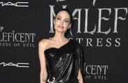 Angelina Jolie donates $1 million to fund meals for vulnerable children