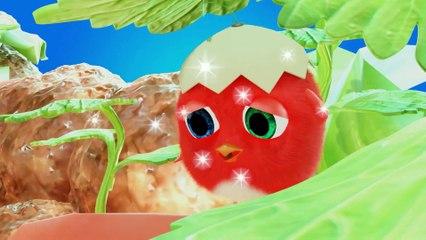 Cuckoo 2020 - Compilation  Crazy CucKoo #29 - New Cartoons for kids
