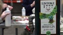 Geistreich: Gin-Destillerie produziert Desinfektionsmittel