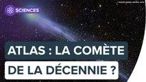 Atlas pourrait être la comète de l'année voire de la décennie !   Futura