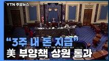 """美 역대최대 부양책 상원 통과...""""3주 내 돈 지급"""" / YTN"""