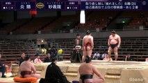 Enho vs Myogiryu - Haru 2020, Makuuchi - Day 14