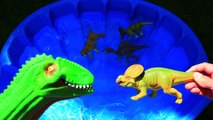 Dinosaurs Learn Names, Jurassic World Dinosaur Educational Video, Dinosaurs Toys for kids
