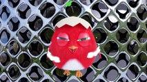 Crazy Cuckoo  Смешной Цыпленок  Эпизод сборники #4  Мультфильм для детей 2020
