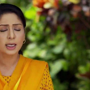 Wafa Kar Chalay Episode 23 HUM TV Drama 24 January 2020