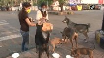 Viral Video : Two Sister Feeding Street Dogs In Nagpur During Lockdown