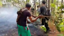 Air pollution hist 20 times safe level as bushfires ravage northern Thailand