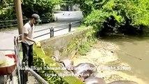 太平动物园70余员工如常照顾它们