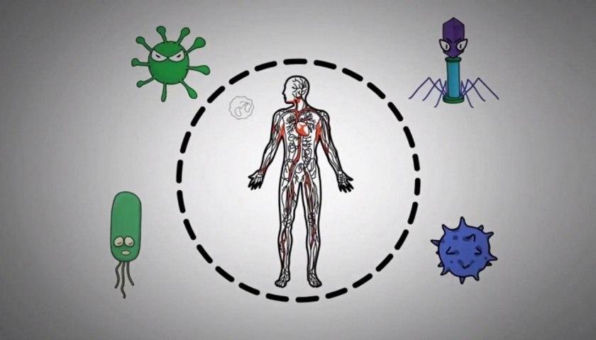 عادات يوميّة يمكن اتّباعها لتقوية جهاز المناعة!