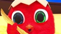 Crazy Cuckoo   Полный эпизод #62  Мультфильм для детей 2020_