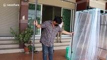 Thai teacher makes disinfectant tunnel amid coronavirus pandemic