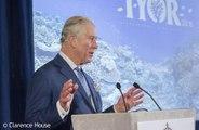 Coronavirus: Prince Charles touché par les messages de soutien