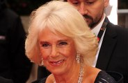 Duchess Camilla's support for domestic abuse victims
