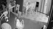 Ghost on cctv. part 4 of 4.. feb 2018 ghost finder
