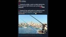 """İstanbul Valisi Yerlikaya: """"Bugün 17.00 itibariyle otobüsle şehir dışına çıkışlar durdurulmuştur"""""""