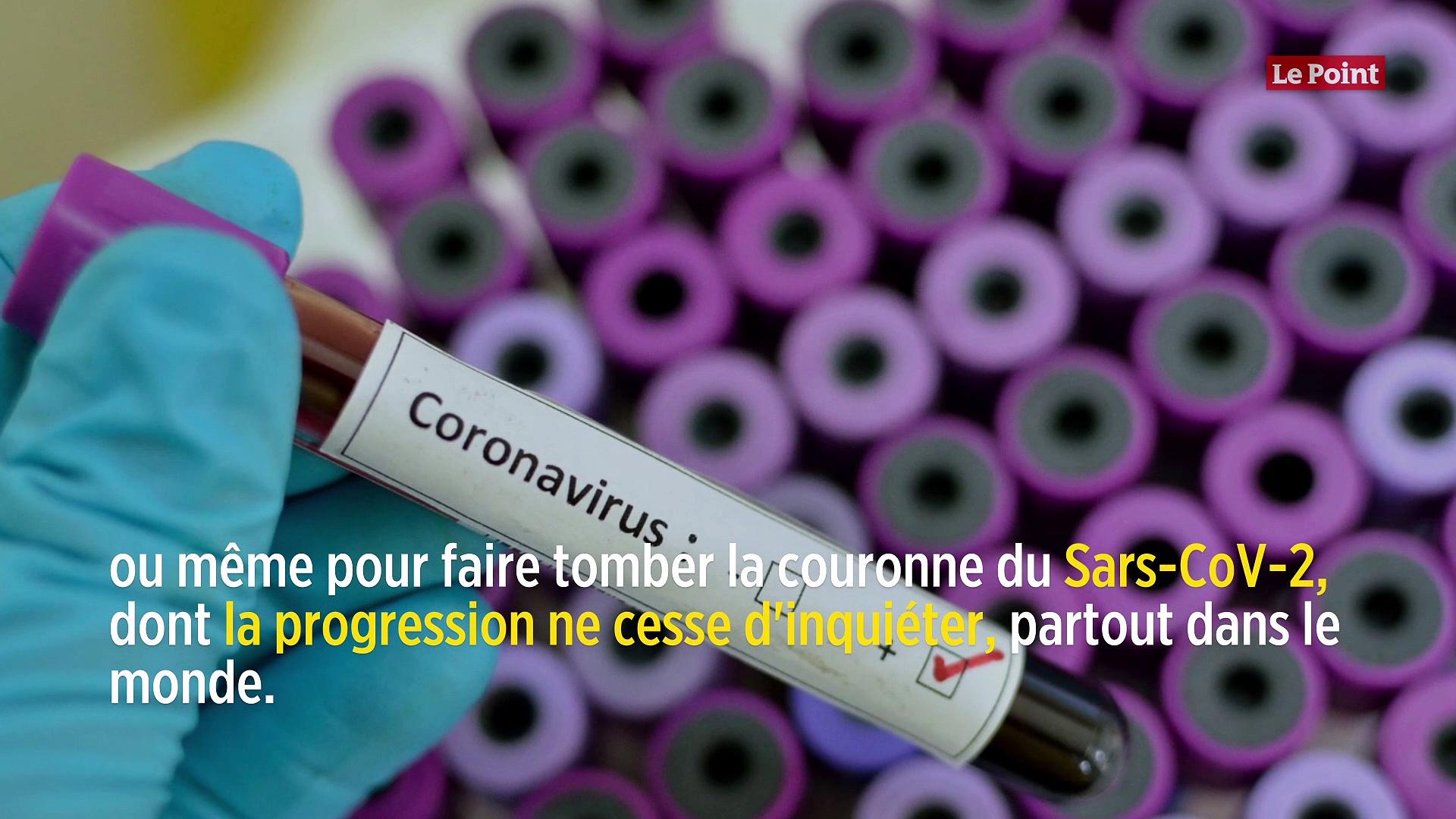 Prévention du coronavirus : la piste du BCG