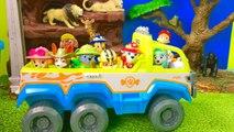Animals Video for Preschool Children - Paw Patrol Jungle Adventure