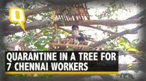 Coronavirus: 7 Workers From Chennai Put in Quarantine Up a Tree in West Bengal