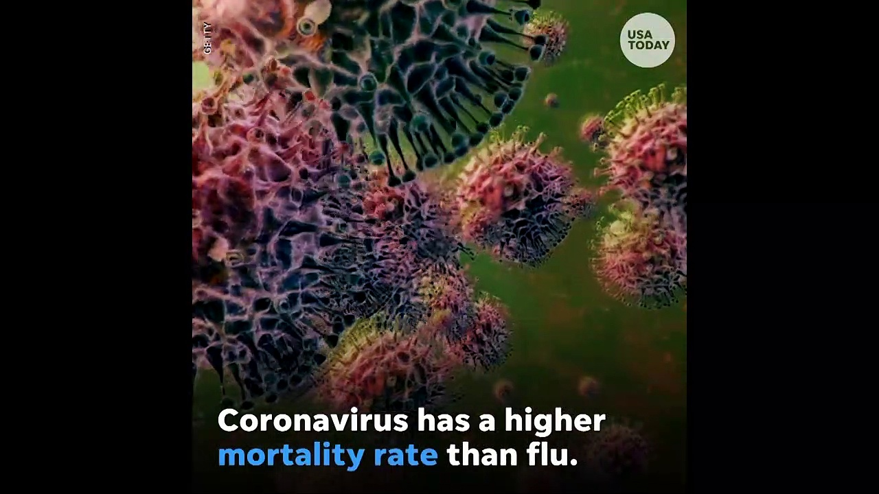 Breaking News Coronavirus – Answering 4 of the most 'Googled' questions