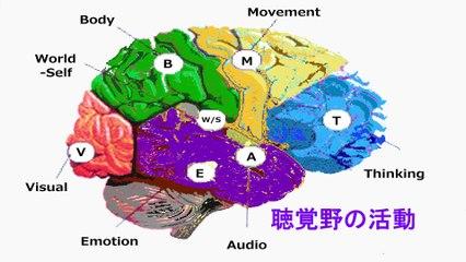 瞑動の科学ーコロナウイルスを瞑動でのりこえよう 3 リゾーム・リー