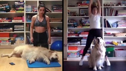 Exercising At Home Isn't Easy With A Playful Dog Around