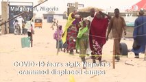 Nigeria's displaced camps set up hygiene stations