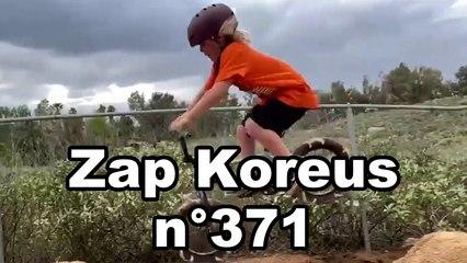 Zap Koreus n°371