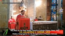 Cardinal Tagle delivers homily for Palm Sunday 2020