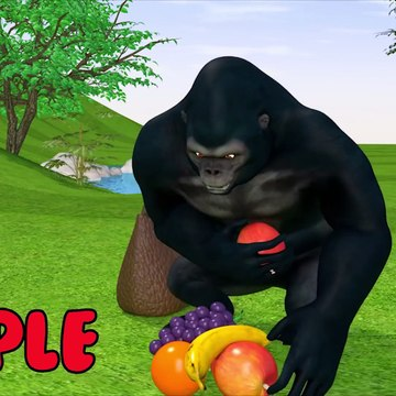 Learn the name of the fruit and the color with the kong and the horse that carries the fruit