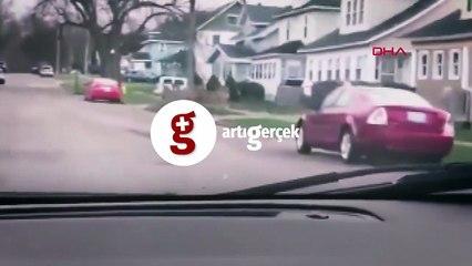 ABD sokaklarında geyik sürüsü görüntülendi