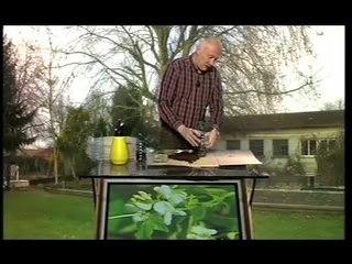 Visionnez les Cours Vidéo de Plantes Grimpantes - Conseils de Jardinage
