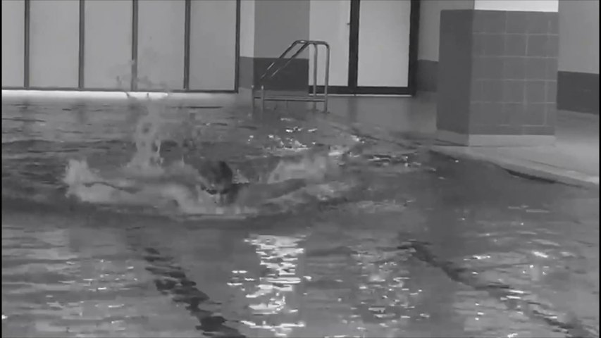3-Style Swimming