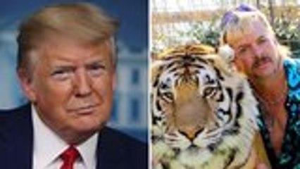 President Trump on Joe Exotic Pardon: Will 'Look Into It'   THR News