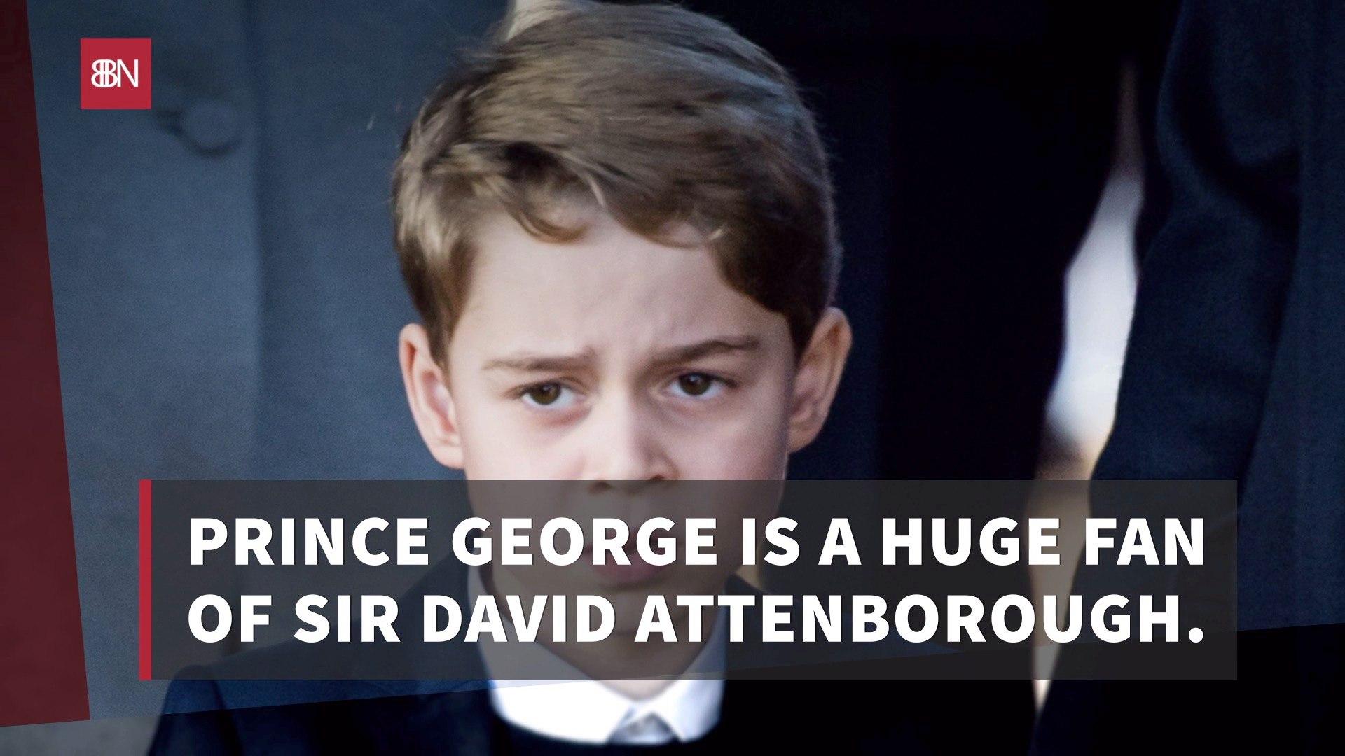 Prince George Has Favorite Shows