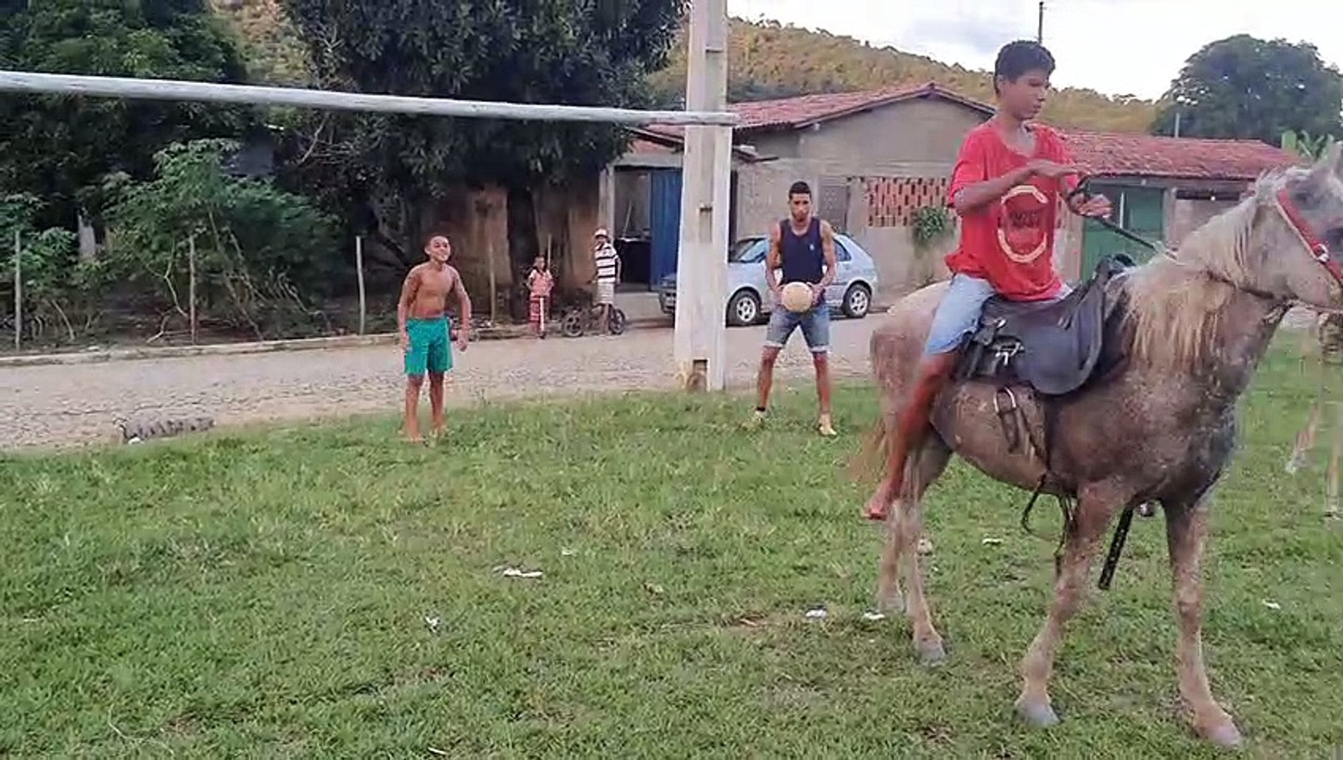Horse Plays Soccer with Kids
