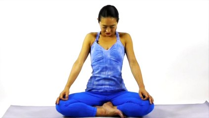 VISIONARY YOGA TV-Day 10 of The 30 Day Visionary Yoga Challenge: Quiet Enthusiasm