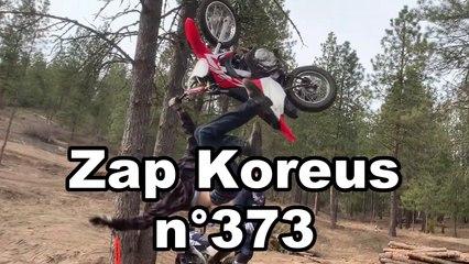 Zap Koreus n° 373