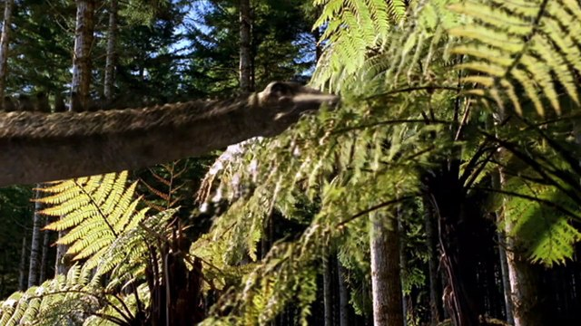 Walking With Dinosaurs_3-4