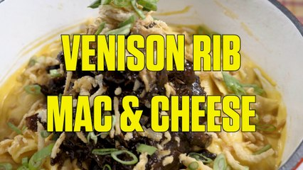 How to Cook Venison Ribs Mac and Cheese