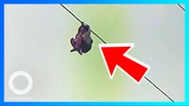 8歲女孩懸掛15公尺高電纜 驚險獲救