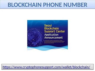 execute the process of Blockchain reset customer service number