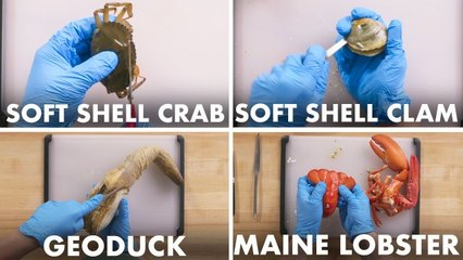 How To Open Every Shellfish