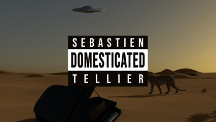 Sébastien Tellier - Domestic Tasks (Official Video)